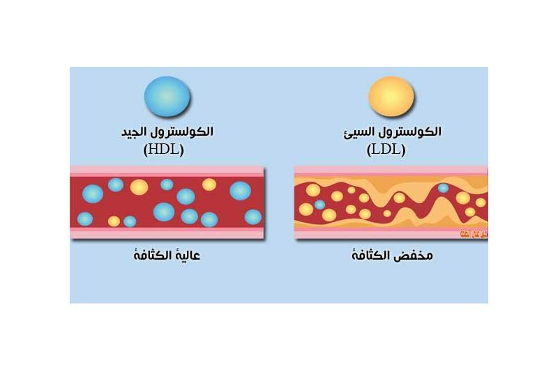 الصيام فرصة لخفض مستوى الكوليسترول الضار في الجسم